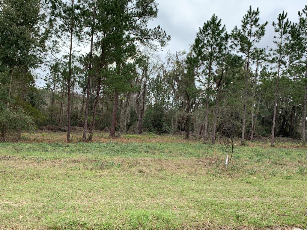 4572 Torree Pines Lane [LOT 22], Lake Park GA