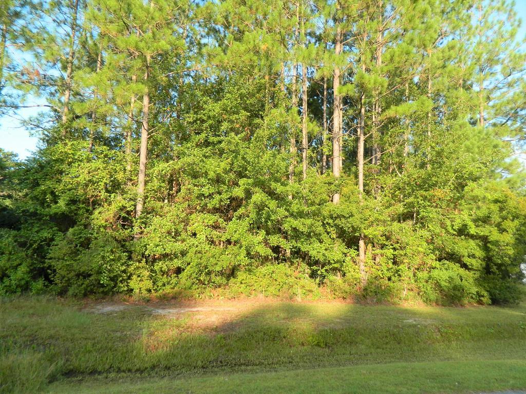 69 Live Oak Trail, Lakeland GA